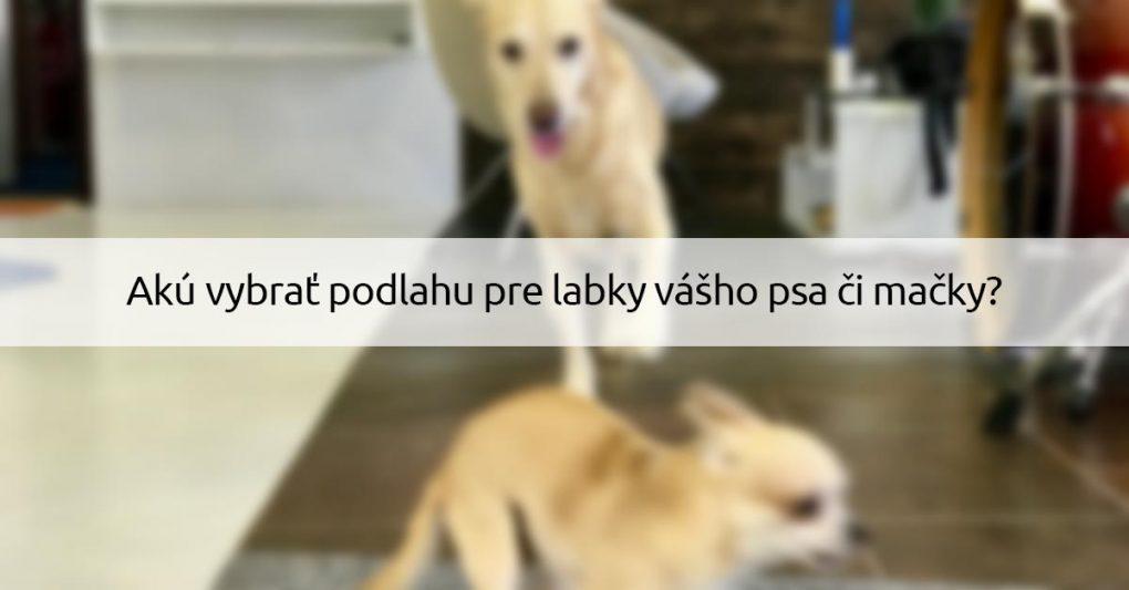 Podlaha pre psa a macku - dizajnovepodlahy.sk